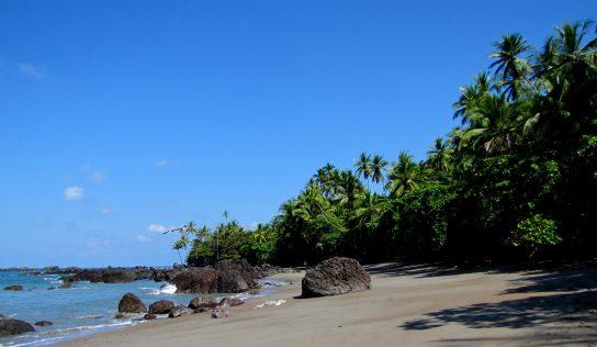 Vivre des aventures mémorables dans les réserves naturelles du Costa Rica