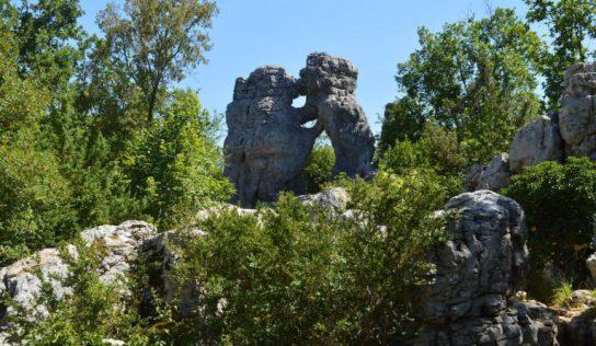 Bois de Païolive un patrimoine Naturel en Ardèche