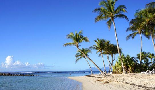Guadeloupe, couleurs Caraïbes – Échappées belles